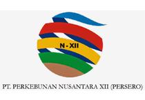 Lowongan Kerja PT. Perkebunan Nusantara XII Terbaru